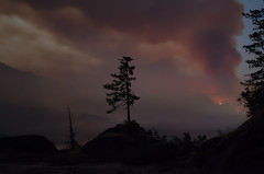 Columbia_River_Gorge_Fire-6 (ShootinInTheDark) Tags: eaglecreekfire columbiarivergorge forestfire fire smoke nature camping oregon