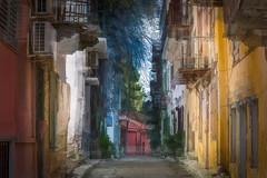 Backstreets of Nafplio (RCARCARCA) Tags: shadows 70200l houses photoartistry tree shade backstreets garage nafplio 5diii sunlight canon sky 2015 greece