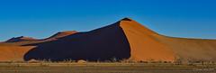Dune shadow (NettyA) Tags: 2017 africa namibdesert namibia sossusvlei arid desert sand sanddunes dune45 hikers panorama namibnaukluftnationalpark