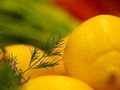 Dill mit Zitrone (1elf12) Tags: hannover kochkurs food photography colorful germany deutschland vhs essen griechische küche kochen cooking dill lemon zitrone