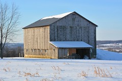 Winters Refuge. New Wilmington, Pa (bobchesarek) Tags: barn buggy winter amish padutch country newwilmington pennsylvania