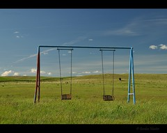 swing with the bulls (Gordon Hunter) Tags: swings swingset play playground park chains blue red prairies summer field fence bulls cattle livestock country rural equipment grass clouds sky southern ab alberta canada gordon hunter nikon d5000 june