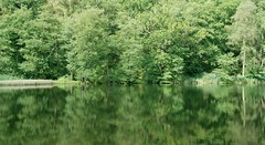 The Forest of Dean - Reflecting on a Beautiful Area of England (antonychammond) Tags: forestofdean gloucestershire uk england trees lake reflections forest woods contactgroups landscape waterscape saariysqualitypictures