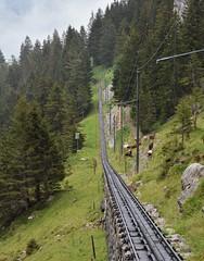 Zwischen Pilatus Kulm und Ämsigen 08.08.2017 (The STB) Tags: pilatusrailway swissrailway narrowgauge schmalspurbahn rackrailway rackandpinion cograilway zahnradbahn pilatus schweizereisenbahnen dieschweiz suisse suiza pilatusbahn