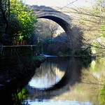 Reflections on the Water of Leith thumbnail