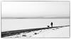 Walking / The Dog (Eline Lyng) Tags: coastline seascape nature landscape people dog pet animal walking norway jeløy jeløya østfold winter snow monochrome monochrom leica leicas s 007 blackandwhite mediumformat 70mm leicalens