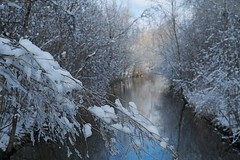 A Completely Wonderful Snowfall II (Herculeus.) Tags: 2018 clouds day ice landscape landscapes mar mi outdoor outdoors outside snow winter usa bokeh trees water reflection