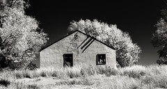 Edler, Colorado (unknown quantity) Tags: abandonedhouse trees sky shadows brokenroof grass openwindows wires unpaintedwood weathered deterioration neglect monochrome blackandwhite faded