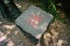 73290074 (alexdotbarber) Tags: 1125 28mm 35mm cdmx df kodakportra400 mexico mexicocity ricohgr1 analog autofocus colornegative fire pointandshoot wideangle