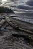 Winter shore (Tony Tomlin) Tags: crescentbeach britishcolumbia canada driftwood beach