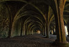 Lay Brothers Refectory (ianpaterson1) Tags: church fountains abbey north yorkshire ripon shadows architecture history england uk nikon d3200 leading lines vault ceiling building