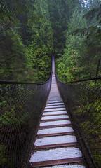 23/365 (Ell@neese) Tags: vancouver british columbia bridge travel explore beauty nature canada 365 pentax photography nobody quiet