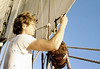 eye-of-the-wind---operation-drake_15414903058_o (christopher sainsbury) Tags: eyeofthewind operationdrake atlantic pacific sea sailing sailingship sailingboat sail sailtraining adventure people sunset sky