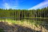 Moose Creek Reservoir (jimgspokane) Tags: moosecreekreservoir camping trees forests idahostate