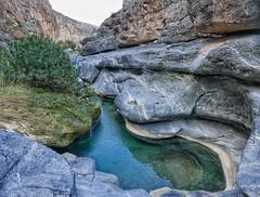 Morning swim spot in Wadi Damn.