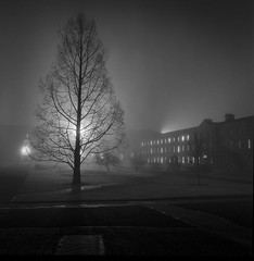 Maynooth misty night 2018 (monosnaps) Tags: monosnaps eddie mallin acros film hassie hasselblad ireland kildare maynooth college mist rodinal grain