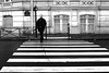 The serene man (pascalcolin1) Tags: paris homme man pluie rain reflets reflection passagepiéton crosswalk crossing traversant parapluie umbrella photoderue streetview urbanarte noiretblanc blackandwhite photopascalcolin 50mm canon50mm canon