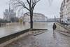 L'entrée en Seine (Arslan) Tags: laseine paris floods winter people streetphotography street weather ilesaintlouis fujifilm fuji fujix100t fujix classicchrome
