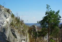 475  I grow on a rocky ground (Hejma (+/- 5400 faves and 1,7 milion views)) Tags: skały wapienne drzewa krzewy chmury światłocień