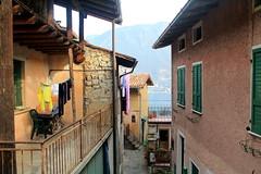 Vite private (J jeid) Tags: life vite house casa abitazioni private monteisola iseo