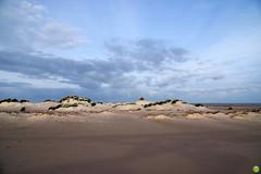 Behind the dunes (petrOlly) Tags: europa europe germany deutschland borkum island ostfriesland eastfrisia northsea nordsee nature natura przyroda
