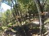 G0121309 (harleyhurricane1) Tags: line zip zipline ziplinepark dadecityflorida treehoppers centralflorida largestziplineparkincentralfl dadecity