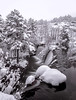 Bajo la Nevada (Chusmaki) Tags: presa cascada nieve hielo invierno omd1 leica818mm ngc