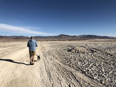 2017-12-31 GOPS Tecopa NYE (133) (MadeIn1953) Tags: 2017 201712 20171231 greatoutdoorsgo camping go gops greatoutdoorspalmspringsgops california inyocounty tecopahotsprings pete snickers