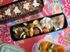Bento 539 (Sandwood.) Tags: bento lunch lunchbox cooking food meal dish jiaozi dumplings quinoa salad meatballs vegetables fruit