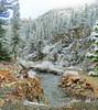 Frosty Walk along Tuolumne River, Yosemite 5-15 (inkknife_2000 (8.5 million views +)) Tags: yosemitenationalpark california usa landscapes mountains snowonmountains cahwy120 tiogapassroad dgrahamphoto snow snowontrees easternsierranevada tuolumneriver newsnow frost tuolumnemeadows redgranite naturallyflockedtrees winterwalk