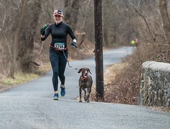 Feb-17 Pickle 2 of 3 (RunningMadPhoto) (The_Little_GSP) Tags: running race pickle ridleycreek piper annie 5k picklerun runningmadphoto