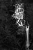 Waterfall of the Little Fawn [Explored 14.1.18! Thank You Very Much] (john&mairi) Tags: waterfall littlefawn scottish trossachs david marshall lodge dukespass aberfoyle bw blackwhite mono monochrome le