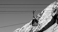 Ropes (Guido Colombini) Tags: pontedilegno tonale bw inverno tree bianconero alps ropeway pine snow mountain