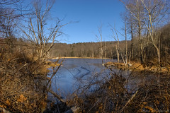 Sterling Forest State Park_0099 (smack53) Tags: smack53 sterlingforestpark newyork rocklandcounty trees lake pond water winter wintertime winterseason nikon d100 nikond100 scenery landscape