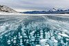 Frozen bubbles under Abraham Lake (deirdre.lyttle) Tags: abrahamlake alberta canada canadianrockies clearwatercounty frozenbubbles glaciallake ice nordegg rockymountains winter methane jewels mountains frigid temperature strong winds