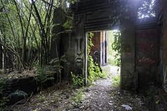 (kuuan) Tags: voigtländerheliarf4515mm manualfocus mf voigtländer15mm aspherical f4515mm superwideheliar apsc ricohgxr mmodule bali padanggalak ruins tamanfestivalbali overgrown grafifiti