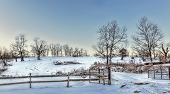 8R9A0808-09Ptzl1scTBbLGER (ultravivid imaging) Tags: ultravividimaging ultra vivid imaging ultravivid colorful canon canon5dmk2 sky scenic sunsetlight winter snow fields farm fence gate trees twilight evening rural tractor pennsylvania pa panoramic painterly path landscape