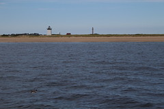 Ptown (robincagey) Tags: capecod massachusetts nature newengland provincetown ptown whalewatch lighthouse