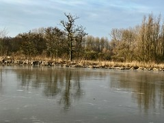 IMG_0565 (hofsteej) Tags: middendelfland vlaardingervaart zuidholland holland netherlands broekpolder march