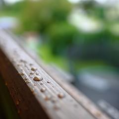 Super shallow & bokehlicious (KwyjiboVanDeKamp) Tags: fujifilm fuji xe2 fujinon xf16mmf14 cropped jpeg sooc velviafilmsimulation 11 squareformat water wasser rain regen drop regentropfen macro makro shallowdepthoffield dof bokeh wood holz