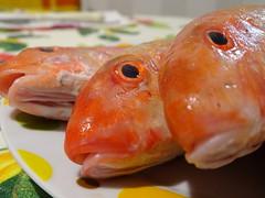 Eyes (RoBeRtO!!!) Tags: rdpic sea fish red mullet eyes pesce mare triglia rossa occhi macro closeup cibo food sonyhx400v