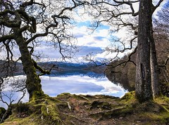 Loch Venachar (picsbyCaroline) Tags: landscape trees scotland loch cold frame unitedkingdom lake scenery scenic