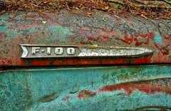 Powerfully Smooth (Todd Evans) Tags: nikon d5100 oldcarcity georgia ga ford f100 rust patina truck pickup hdr