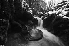 Petite cascade en amont du Gour de Conche - Jura (francky25) Tags: petite cascade en amont du gour de conche jura franchecomté noir et blanc