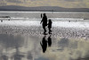 Hand in hand (jmiller35) Tags: ironmen crosby liverpool shadow sunlight canon people reflection sand water family silhouette outdoors beach