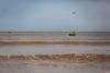 Bajada Río San José (muniarica) Tags: arica chile rio sanjosé bajada agua lluvias estivales limpieza barro basura escombros sedimentos suciedad playa desembocadura verano contaminación cauce inundación cambio climatico chinchorro municipalidad ima muniarica
