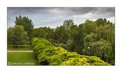 Sinfonia de verdes y nubes junto al Ebro (@antonio urbano) Tags: logroño la rioja parquedelebrologroño antoniourbano