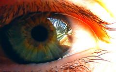 You (C-Aida) Tags: macro eye macromondays pupil people universe tao taoteching laozi laotse you spirituality meditation reflection
