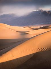 Contrast (Graeme Tozer) Tags: mesquiteflatdunes california usa rain weather desert deathvalley mesquitedunes deathvalleynationalpark