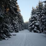 Harz-Oderbrueck_e-m10_1012074153 thumbnail